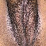 femme poilue du sexe dans le 53 libre en semaine